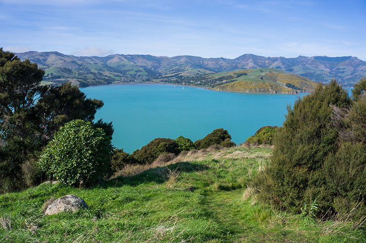 The calm blue waters surrounding Banks Peninsula, New Zealand
