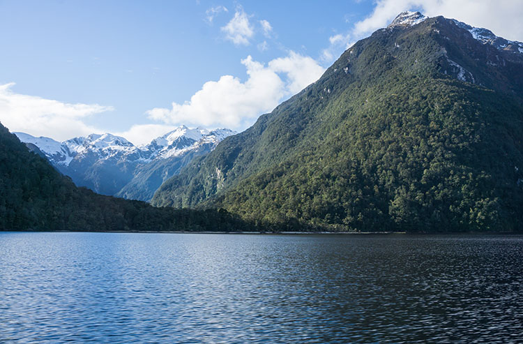 6 Fun Things to Do in Manapouri