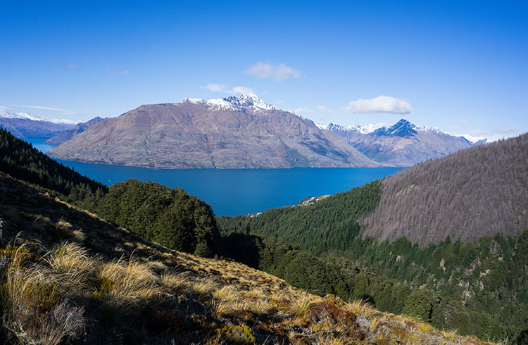Views from the Ben Lomond hike, Queenstown, New Zealand