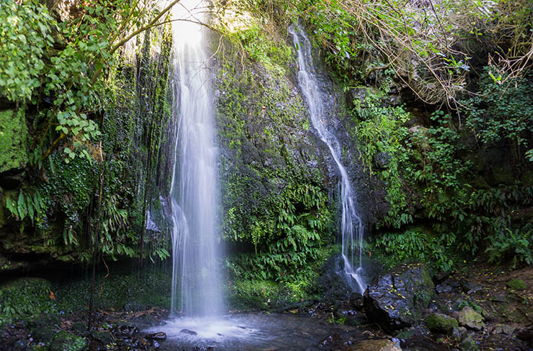 Newton's Waterfall, Akaroa