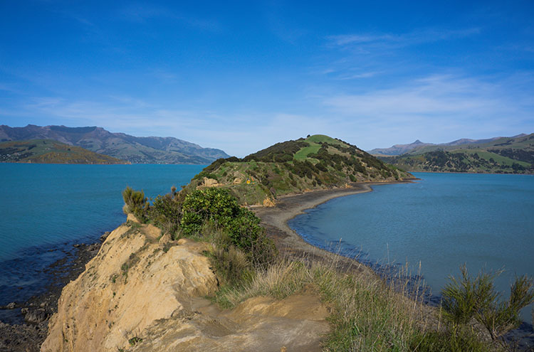 Onawe Peninsula, Banks Peninsula, New Zealand