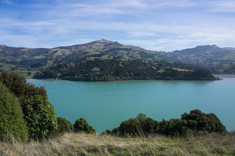 Hiking the Onawe Pa Track, Banks Peninsula, New Zealand
