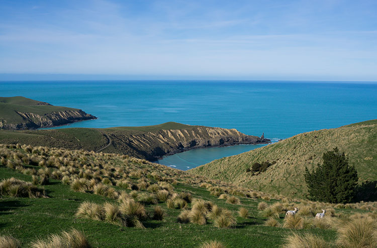 View of Tumbledown Bay and Te Oka Bay from above, New Zealand