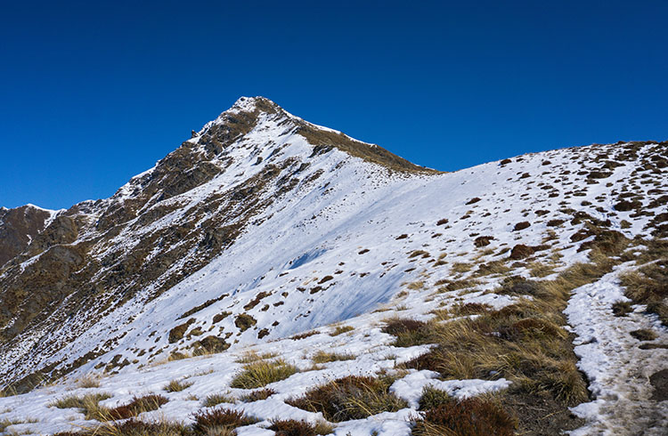The track to Ben Lomond, Queenstown, New Zealand