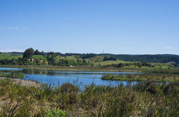 Sinclair Wetlands view, Dunedin, New Zealand