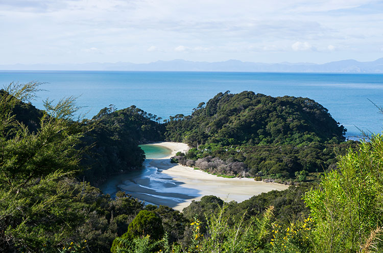 A viewpoint in Abel Tasman National Park, New Zealand