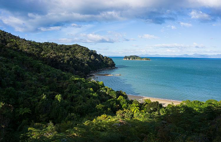 A beach on the Abel Tasman Track, New Zealand