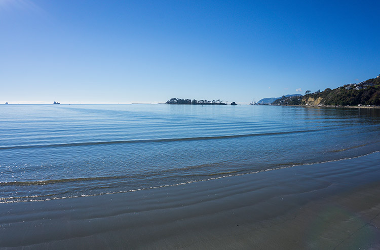 Tahunanui Beach, one of the best things to do in Nelson, New Zealand