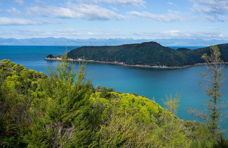 A viewpoint near Anchorage Bay, Abel Tasman National Park