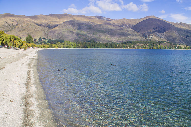 Things to do in Wanaka, New Zealand -- the lakefront beach area