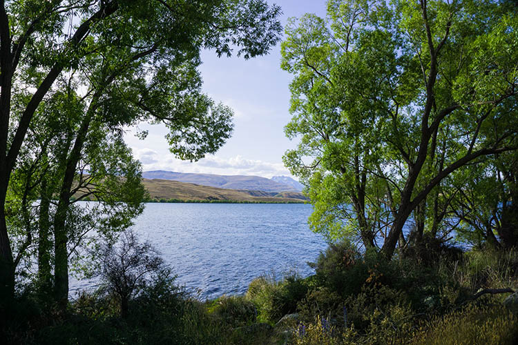 Lake Alexandrina, Mackenzie Country, New Zealand