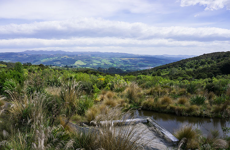Orokonui Ecosanctuary view, Dunedin, New Zealand