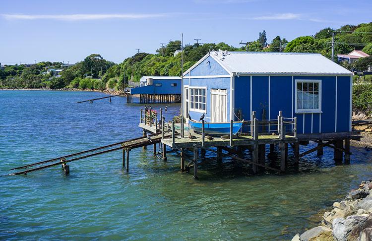 Broad Bay, Dunedin, New Zealand