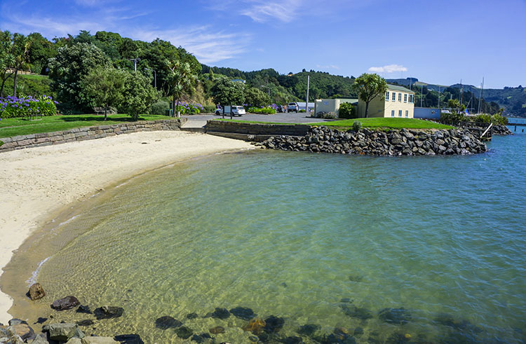 Broad Bay Beach, Dunedin, New Zealand