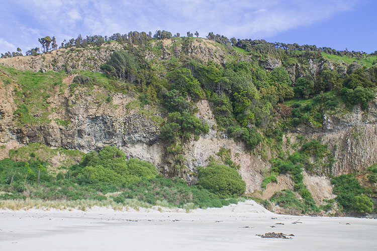 Cliffs at Murdering Beach, Dunedin, New Zealand