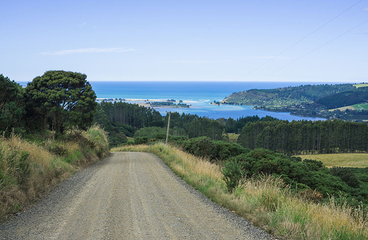 A scenic road above Warrington Beach, Dunedin