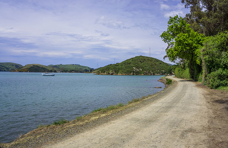 A gravel road in Port Chalmers, Dunedin, New Zealand