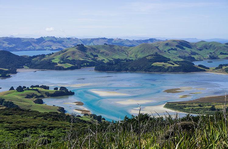 Hoopers Inlet, Portobello, Dunedin, New Zealand