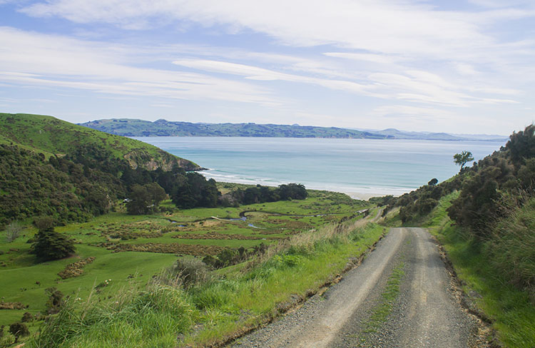 The road to Murdering Beach, Dunedin, New Zealand