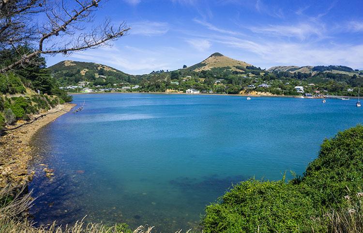 A nice view in Portobello, Dunedin, New Zealand