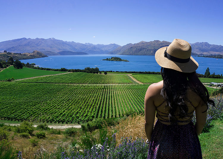 Relaxing at Rippon Vineyard, Wanaka, New Zealand
