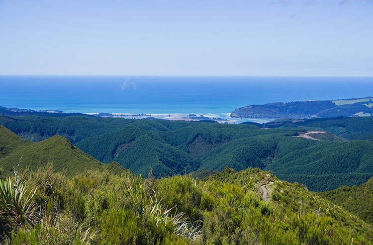 Coastal views from the Silver Peaks Track, Dunedin, New Zealand