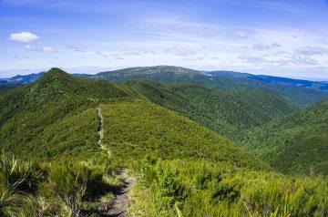 Silver Peaks, Dunedin, New Zealand