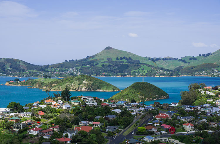 Beautiful view above Port Chalmers, Dunedin, New Zealand