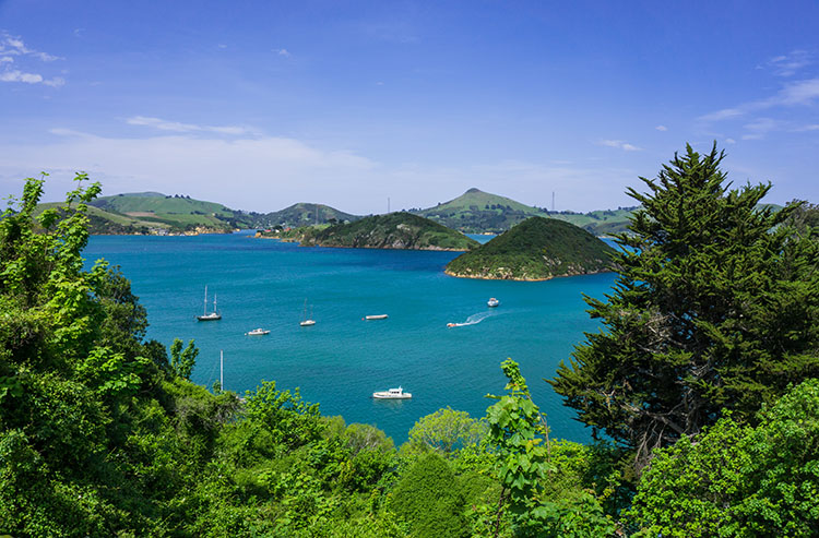 Viewpoint in Port Chalmers, Dunedin, New Zealand