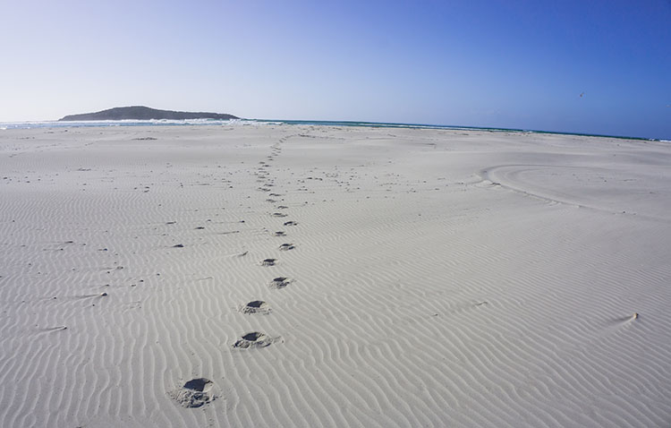 Tracks in the sand at Taieri Mouth Beach, Dunedin, New Zealand