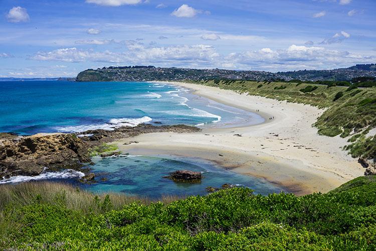 St Clair / St Kilda Beach, Dunedin