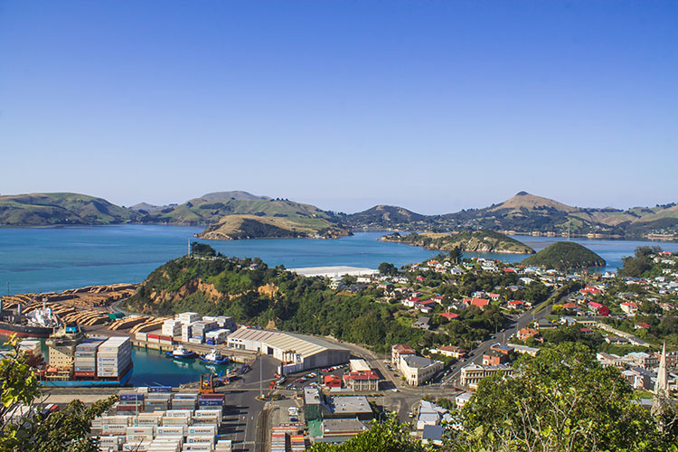 Viewpoint above Port Chalmers, Dunedin, New Zealand