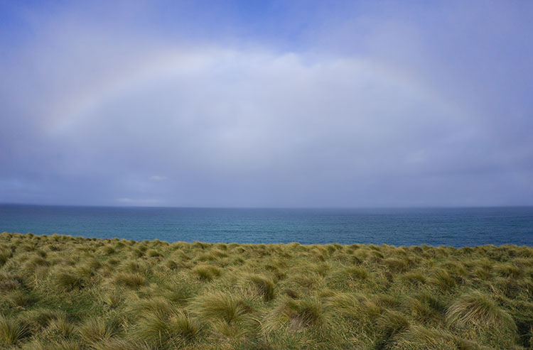 A rainbow at Slope Point, the Catlins, New Zealand