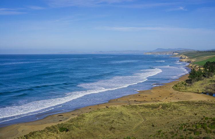 Hiking the Tavora Reserve Track, Coastal Otago