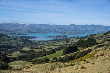 The scenic drive from Christchurch to Akaroa, New Zealand