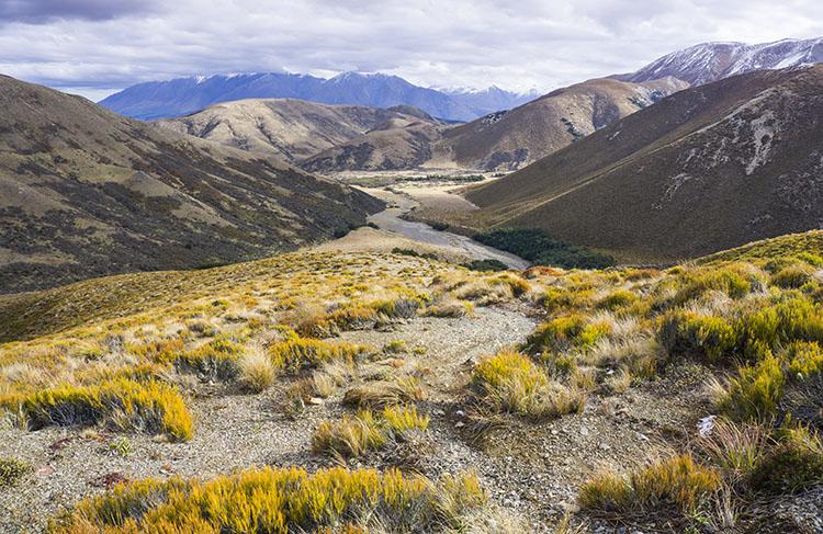 Mount Lyndon Track, New Zealand