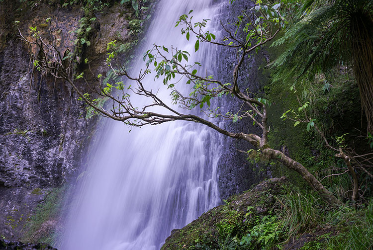 Upper Waipohatu Waterfall, Catlins, New Zealand