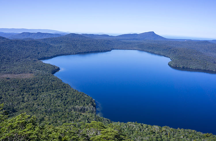 Hiking the Lake Hauroko Lookout Track, Fiordland National Park