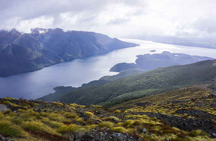 Hiking the Kepler Track in 3 Days: Tips | What to Pack | What You'll See