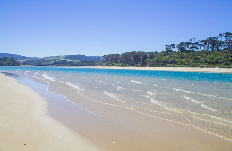 White sands at Papatowai Beach, the Catlins, New Zealand