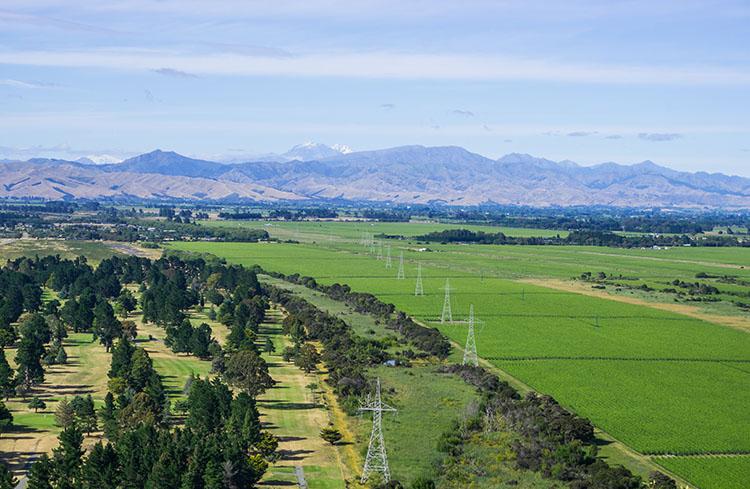 Rarangi Vineyards, Marlborough, New Zealand