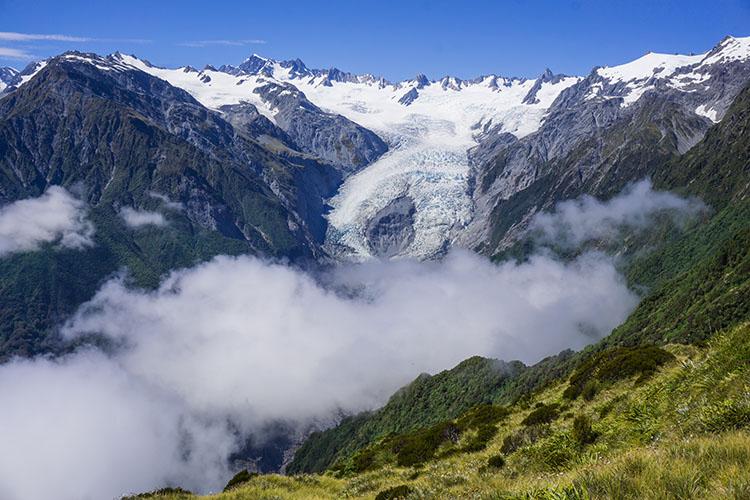 View of Franz Josef Glacier from the Alex Knob Track, New Zealand