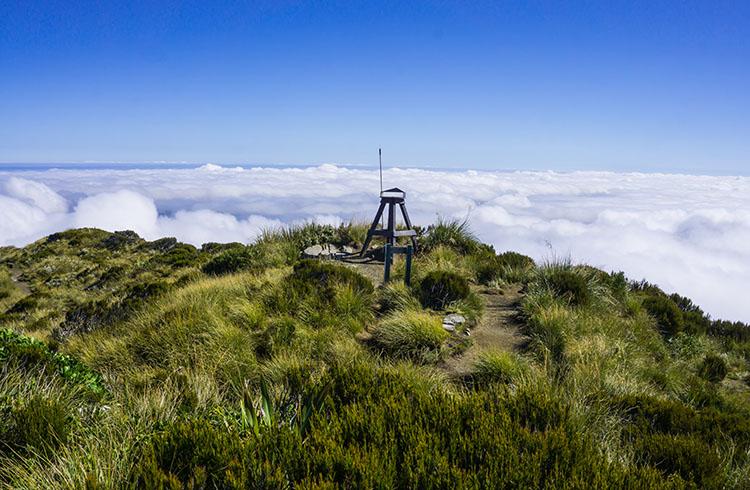 Top of the Alex Knob Track, New Zealand