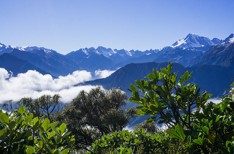 Mountains on the Alex Knob Track, Franz Josef, New Zealand