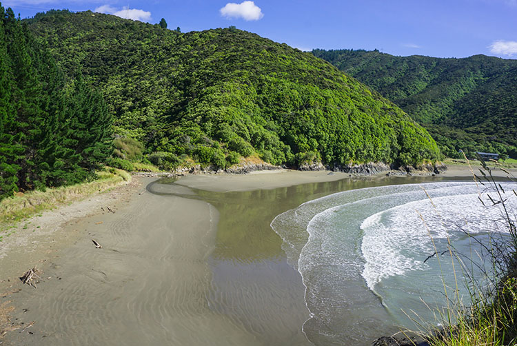 View of Whites Bay, Marlborough, New Zealand