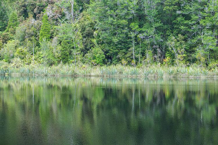 Lake Hanlon, Karamea
