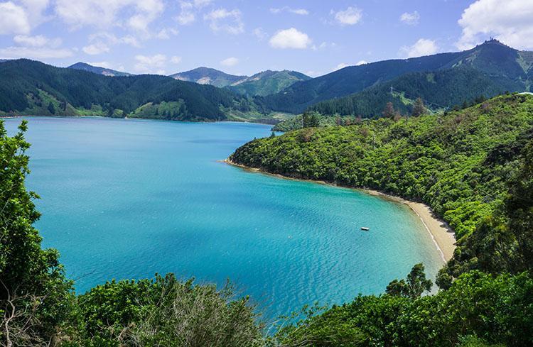 Marlborough Sounds view, New Zealand