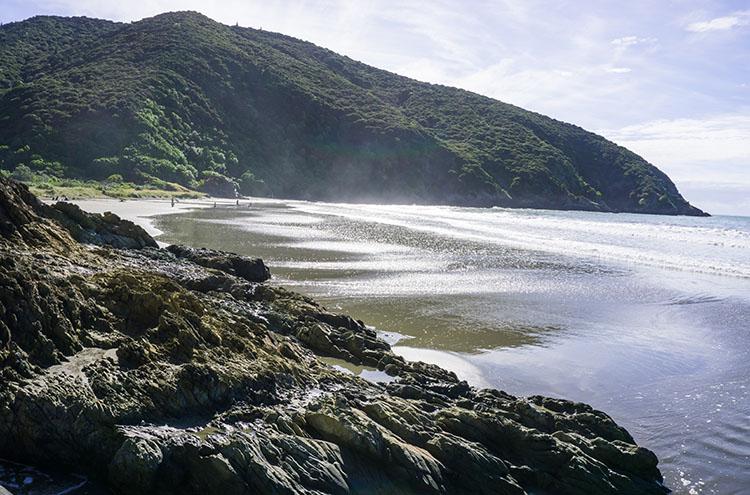 Whites Bay, Marlborough, New Zealand