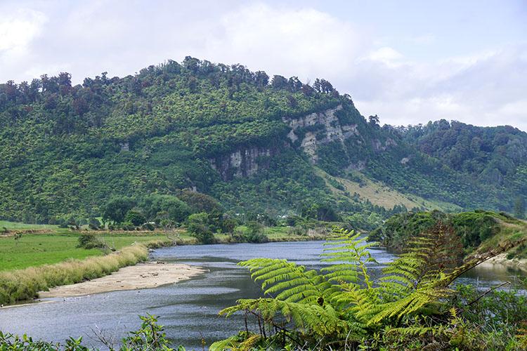 Little Wanganui River, New Zealand