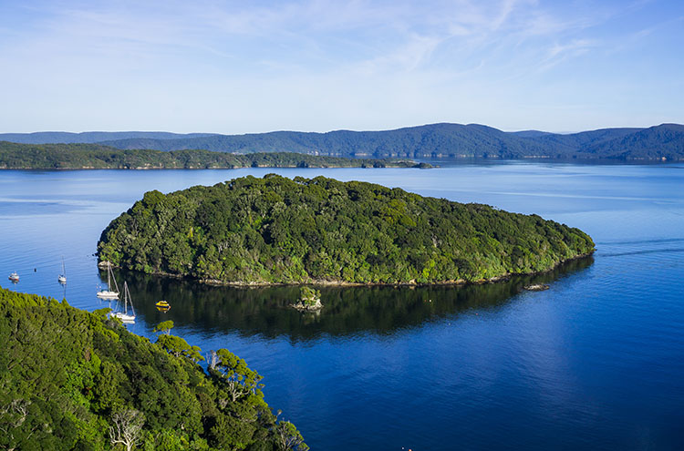 Patterson Inlet view from Observation Rock, Stewart Island, New Zealand
